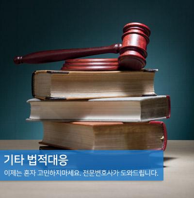 기타 법적대응